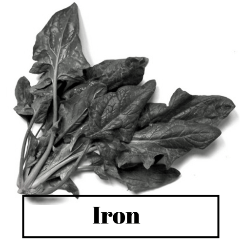 Good results on Google SERP when searching for 'Iron for hair'