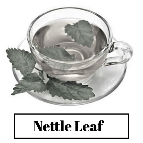 Good results on Google SERP when searching for 'Nettle Leaf for hair'